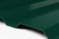 Металлопрофиль для забора (профнастил) С-20 высота листа 1.7 метра 6005 (хвойно-зеленый)